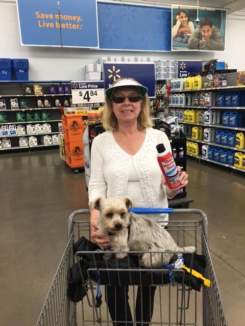 Carol Walmart